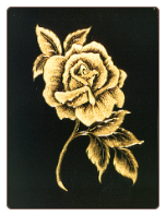 ENGRAVED ROSE